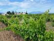 Domaine viticole de 35 ha proche de Perpignan