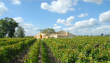 SAINT-EMILION-Grand-Crus