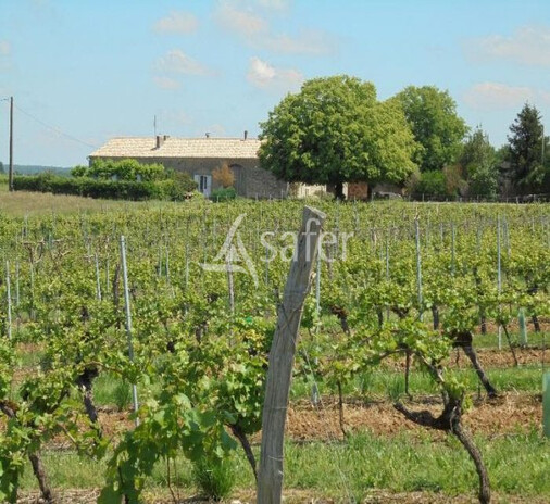 Intervignes.com : Belle propriété viticole AOC Cotes de Durac
